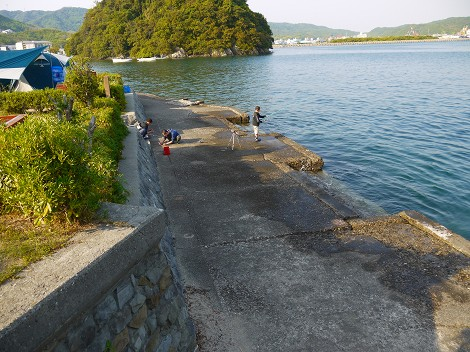 キャンプ 場 淡路島